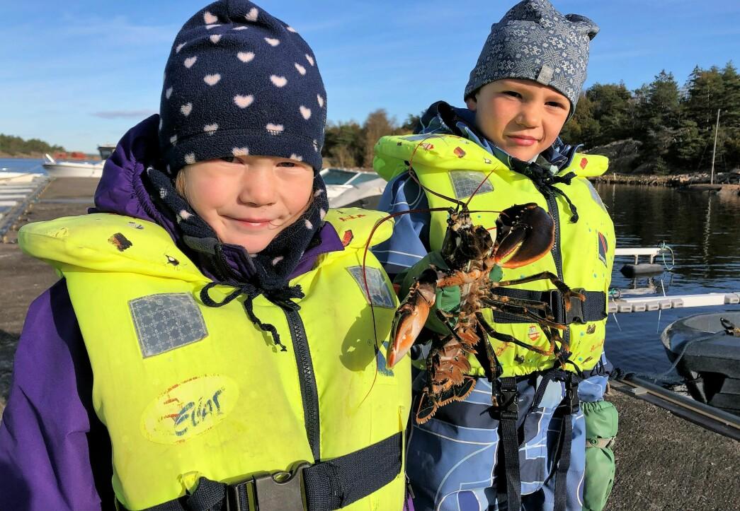 Storfangst for små, modige hummerfiskere